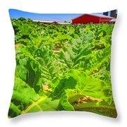 Michigan Surgar Beet Farming Throw Pillow