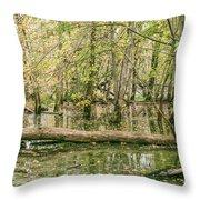 Michigan Swamp Throw Pillow