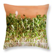 Micro Green Throw Pillow