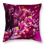 Micro Pollen Throw Pillow