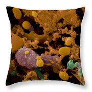 Microbial Discharge From Toothbrush Sem Throw Pillow
