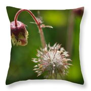Microcosm Of Beauty Throw Pillow
