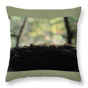 Microsmos Throw Pillow