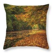 Mid Autumn On The Grand Union No 4 Throw Pillow