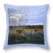 Take Out - Deer Throw Pillow