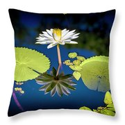 Mid Day Water Lily Reflection Throw Pillow