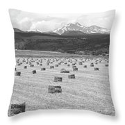Mid June Colorado Hay  And The Twin Peaks Longs And Meeker Bw Throw Pillow