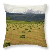 Mid June Colorado Hay  And The Twin Peaks Longs And Meeker Throw Pillow