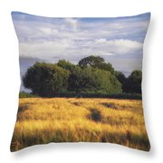 Mid Summer Cereal Field Throw Pillow