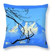 Mid Winter Throw Pillow