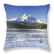 Mid-winter Morning Throw Pillow