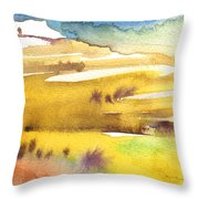 Midday 16 Throw Pillow