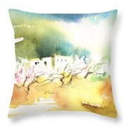 Midday 20 Throw Pillow