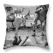 Middle East: Water, C1932 Throw Pillow