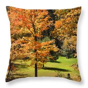 Middle Falls Viewpoint In Letchworth State Park Throw Pillow