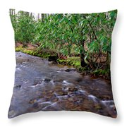 Middle Fork Mist Throw Pillow by Thomas R Fletcher