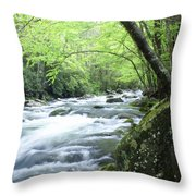 Middle Fork River Throw Pillow