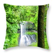 Middle North Falls 5 Throw Pillow