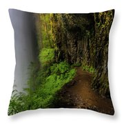 Middle North Falls Grotto Throw Pillow