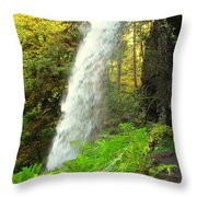 Middle North Falls Throw Pillow
