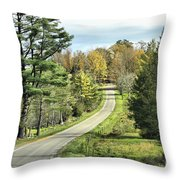 Middle Road In Autumn Throw Pillow