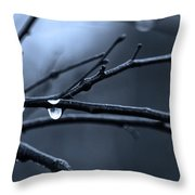 Middle Winter Blues Throw Pillow