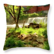 Middlebury Throw Pillow