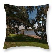 Middleton Live Oak Charm Throw Pillow