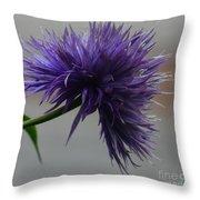 Midnight Blue 16-01 Throw Pillow