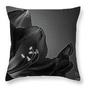 Midnight Blue Amy Bw Throw Pillow