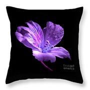 Midnight Calm Throw Pillow