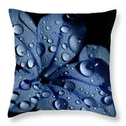 Midnight Dew Throw Pillow
