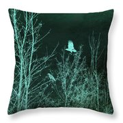 Midnight Flight Silhouette Teal Throw Pillow
