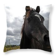 Midnight Melody Throw Pillow