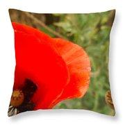 Midsummer Poppy Throw Pillow