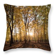 Midwest Forest Throw Pillow