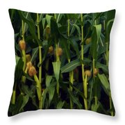 Midwest Silk Throw Pillow