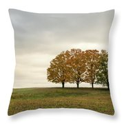 Midwest Throw Pillow