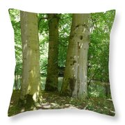 Mighty Beech Trees Throw Pillow