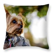Mighty Dog Throw Pillow