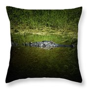 Mighty Fine Throw Pillow