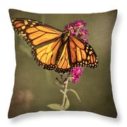 Migrant Worker Throw Pillow