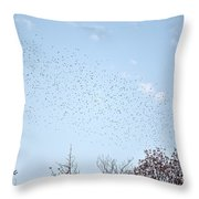 Migrating Birds Throw Pillow