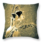 Milk Weed And Hay Throw Pillow by Bob Orsillo