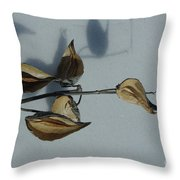 Milk Weed Pods In Snow Throw Pillow