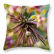 Milkweed 3 Throw Pillow