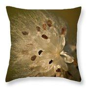 Milkweed Blast Throw Pillow