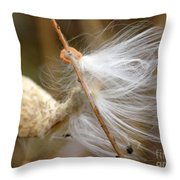 Milkweed Feathers Throw Pillow
