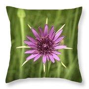 Milkweed Flower Throw Pillow