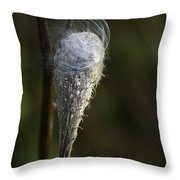 Milkweed In Autumn Throw Pillow